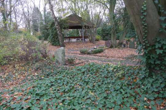 Kortenfriedhof, November 2020 (Aufnahme Klaus Winter)